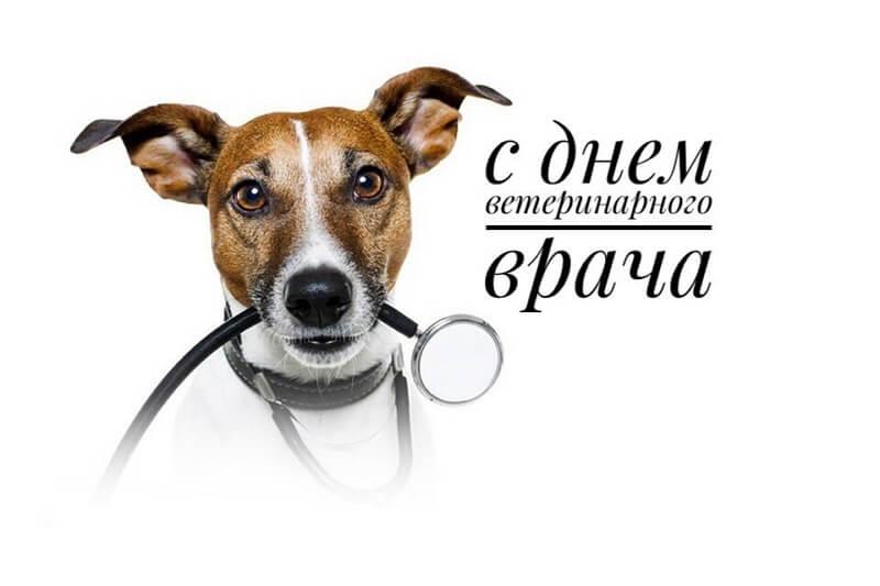 mezhdunarodnyj-den-veterinarnogo-vracha-humoraf-22